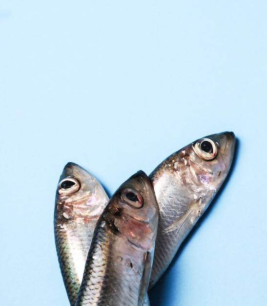 Свежая вкусная рыба на синем Бесплатные Фотографии