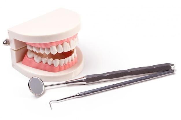 白い歯 無料写真