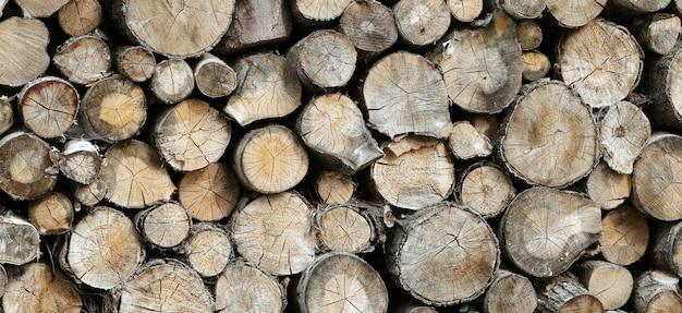 たくさんの木材 無料写真