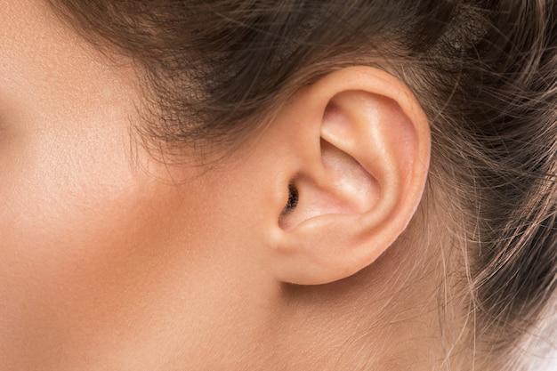 女性の耳 Premium写真