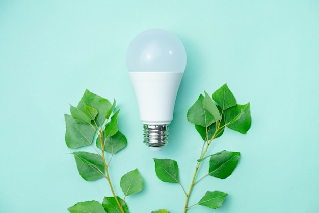 環境意識と電気の経済的使用を象徴する抽象的なイメージ Premium写真