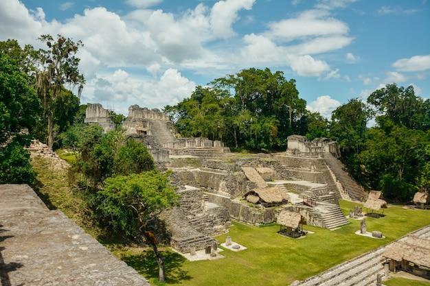 ティカル考古学国立公園。 Premium写真