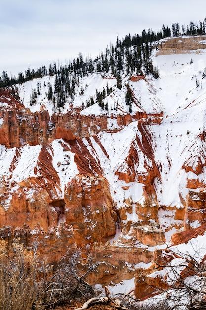 冬の朝、ブライスキャニオン、アメリカのホードゥー岩 Premium写真