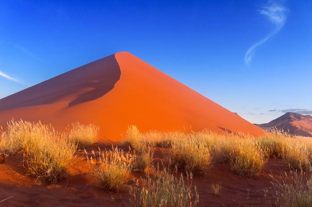 Красивый закат дюны и природа пустыни намиб, соссусвлей, намибия, южная африка Premium Фотографии