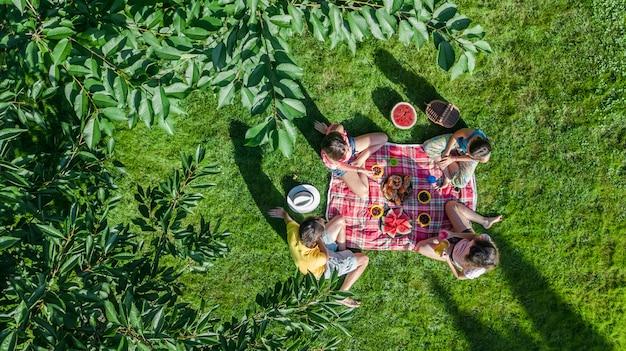 公園でピクニックを持つ子供、庭の草の上に座って屋外で健康的な食事を食べる子供、上から空中ドローンビュー、家族での休暇、週末を持つ子供を持つ幸せな家族 Premium写真