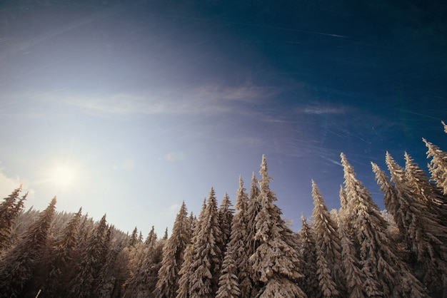 Закат в зимних снежных горах Premium Фотографии
