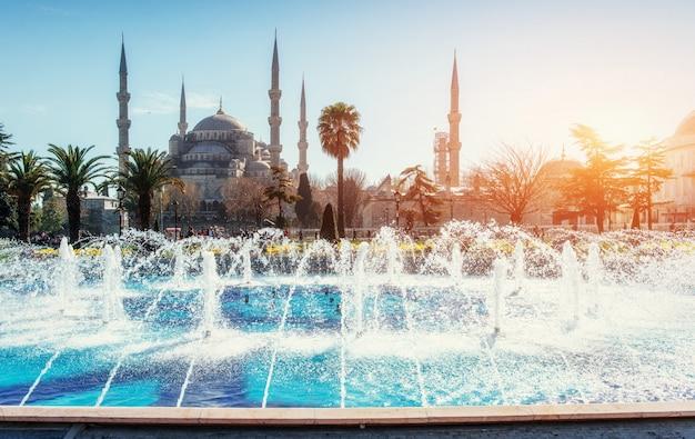 スルタンアーメドモスクイルミネーション。イスタンブール、トルコ Premium写真