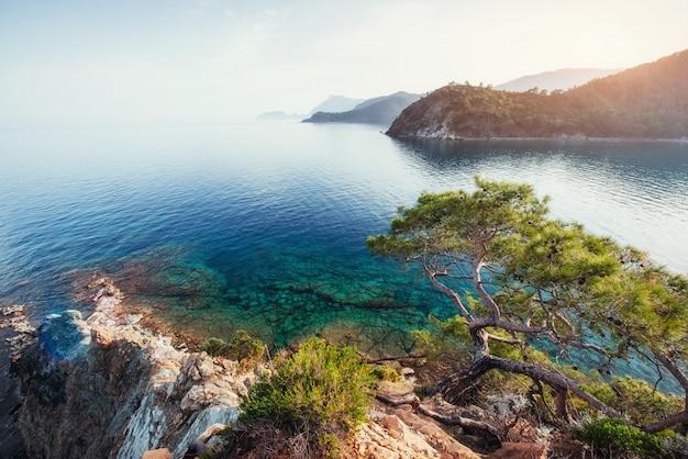 トルコの海岸に地中海の青い海の波 Premium写真