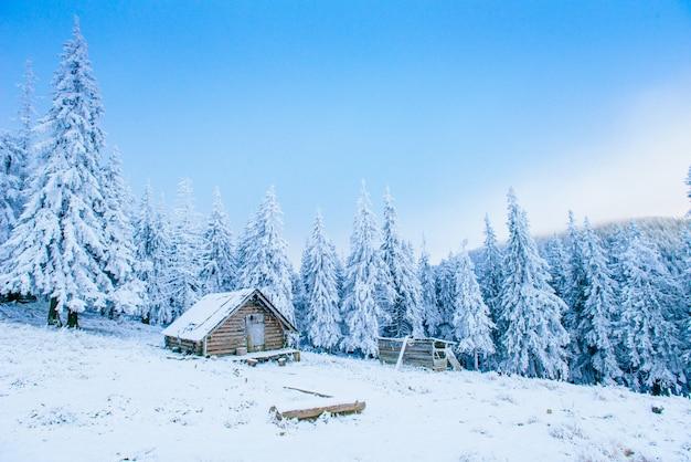 Хижина в горах зимой Premium Фотографии