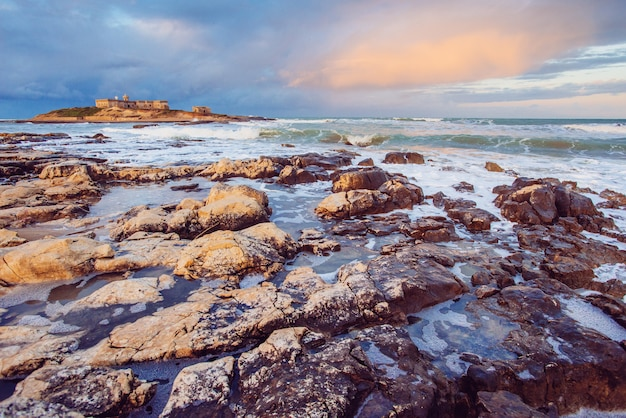 太平洋の海岸線の眺め Premium写真