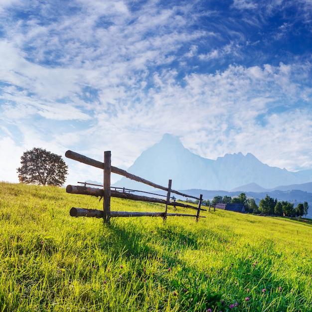 木製のフェンス-野生の花で覆われた美しい草原 Premium写真