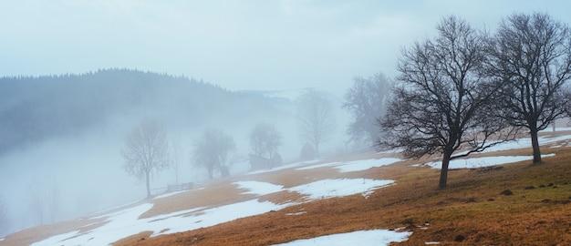 ウクライナの山の冬の最後の日、濃霧。カルパチア人。 Premium写真