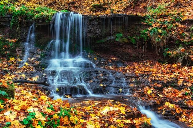 秋の日光の滝美しさの世界カルパティア山脈。ウクライナ。ヨーロッパ Premium写真