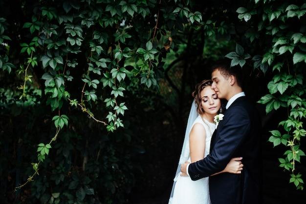 美しい公園で彼女の新郎を抱いて若い花嫁 Premium写真
