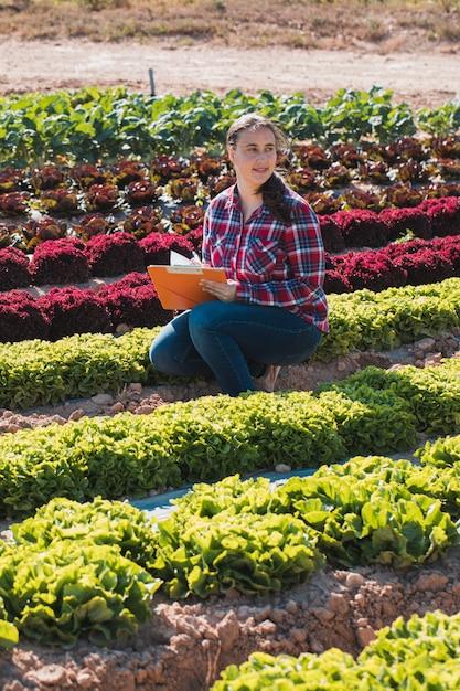 Молодая техническая женщина, работающая в области салатов с папкой Premium Фотографии