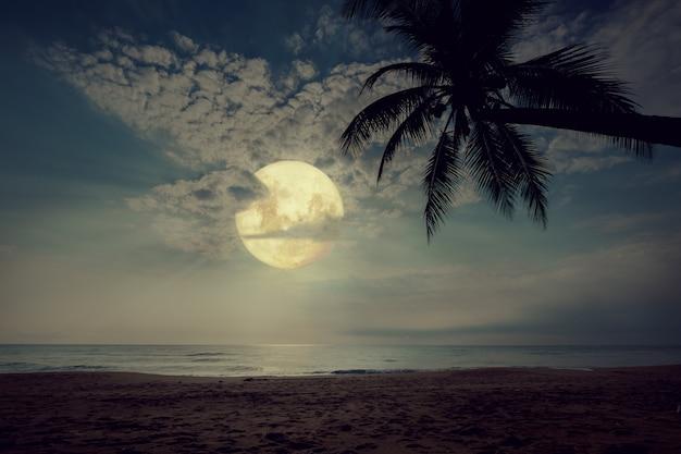 夜の空、満月、ヴィンテージの色調の星と美しいファンタジー熱帯のビーチ。 Premium写真