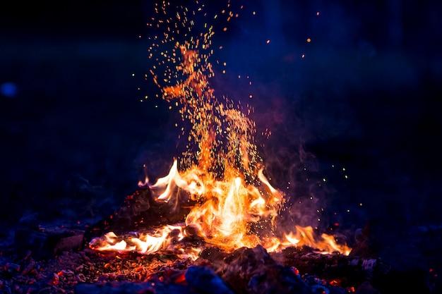 夜に燃える木 Premium写真