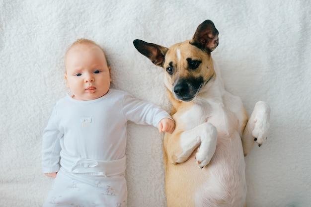 生まれたばかりの赤ちゃんのライフスタイルソフトフォーカスの肖像画は、ベージュのカバーに面白い子犬と一緒に背中に横たわっています。愛らしいカップルの友情。自宅で犬と一緒にリラックスできる素敵な小さな男性の子。看護赤ちゃんのペット。 Premium写真