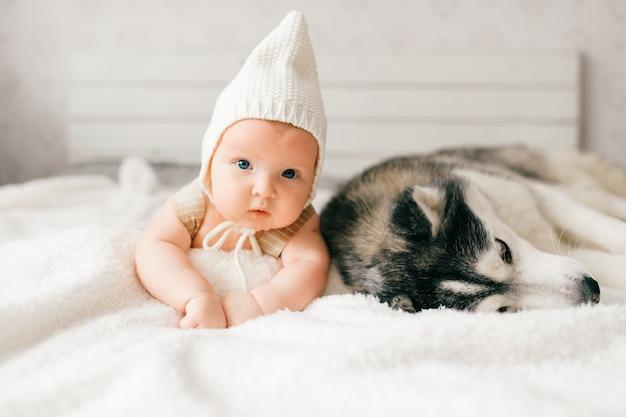 Портрет фокуса образа жизни новорожденного мягкий лежа на задней части вместе с осиплым щенком на кровати. маленький ребенок и милый хаски дружба. прелестный младенец смешной ребенок в шапке отдыхает с домашним животным Premium Фотографии