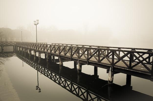 Зимняя и туманная сцена озера Premium Фотографии
