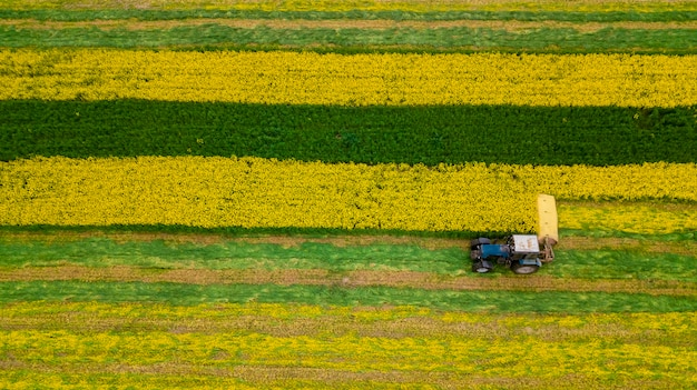 ドローンで菜種トラクターの航空写真を刈る Premium写真