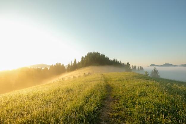山を背景に美しい日の出時刻 Premium写真