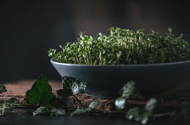 木製の素朴な灰色の皿にマイクログリーン Premium写真