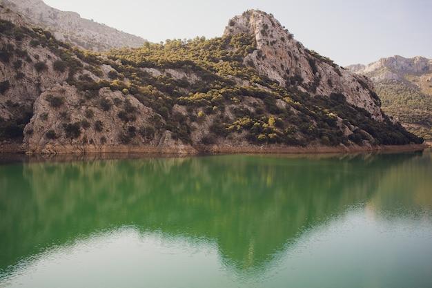 Идиллический летний пейзаж с чистым горным озером в альпах. Premium Фотографии