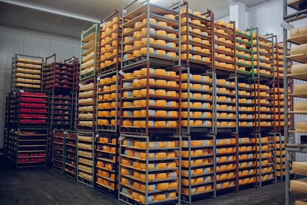 Полки с сырной фабрикой Premium Фотографии