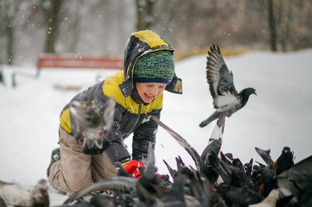 少年は冬に空腹の鳥を養います。風邪の中で動物を救出してください。子供は自然を守ります。雪の冬の都市ハト。 Premium写真