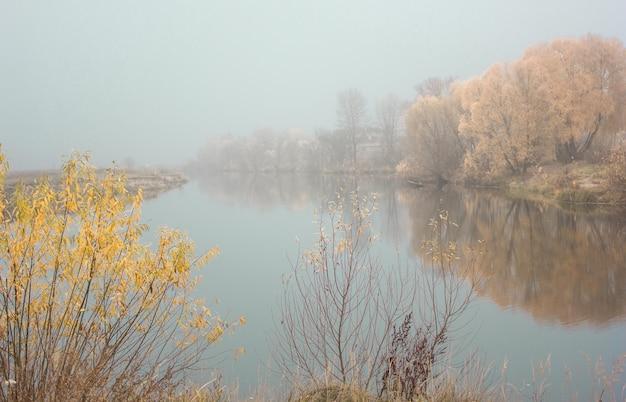 Осенний пейзаж - туманное озеро и деревья и сухие опавшие оранжевые осенние листья. готический осенний пейзаж, осенняя аллея в туманный осенний день Premium Фотографии