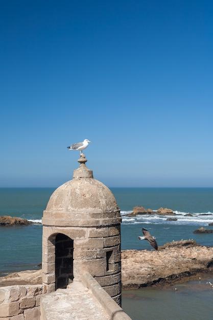 エッサウィラ、モロッコの古い要塞 無料写真