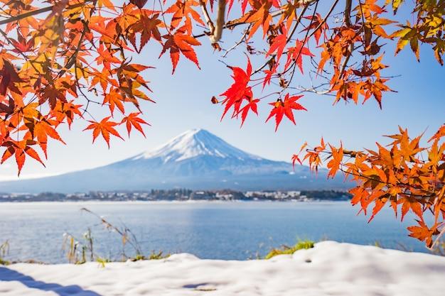 河口湖、秋の紅葉と赤い葉を持つ秋の季節と山の富士 Premium写真
