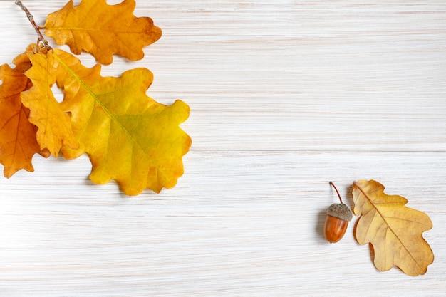 黄ばんだオークの葉と明るい白い木製のテーブルのドングリ。 Premium写真