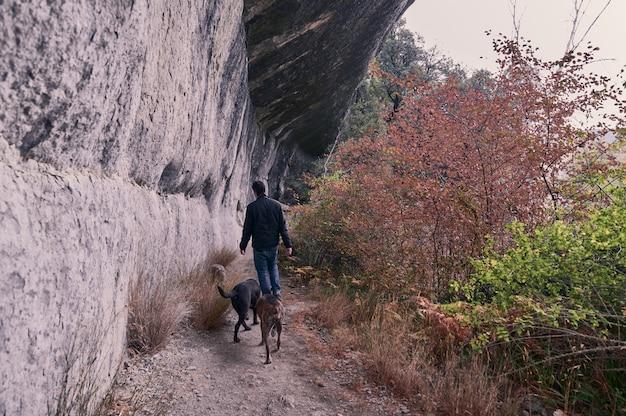 彼の犬と滝の後ろを歩く若い男 Premium写真