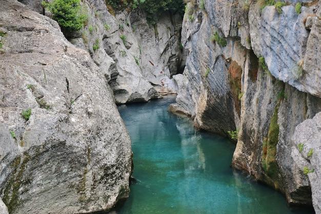 緑の渓谷の川 Premium写真