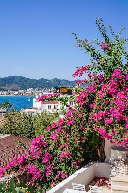マルマリスの古い町の美しい街並みと植物と晴れた日に花 Premium写真
