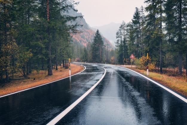 雨の中で秋の森の道。曇りの雨の日に完璧なアスファルト山道 Premium写真