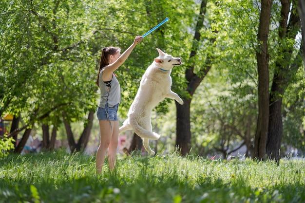 Молодая красивая девушка бросает свою собаку в парке на закате Premium Фотографии