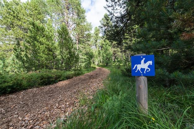 Тропа для лошадей Premium Фотографии