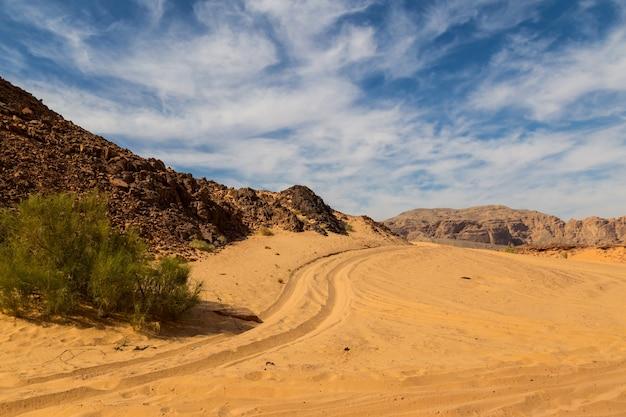 山に囲まれたシナイ砂漠 Premium写真