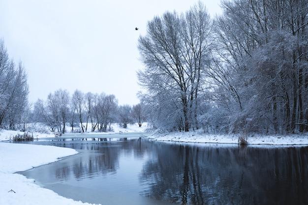 Зимний пейзаж с видом на реку во время снегопада. снежные деревья отражаются в воде Premium Фотографии