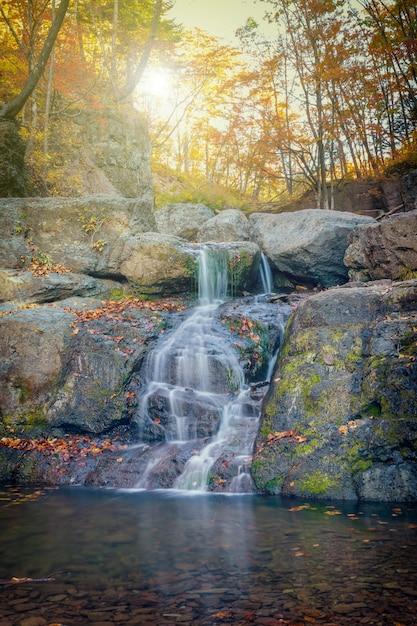 森の中の秋の色の小さな滝カスケード Premium写真