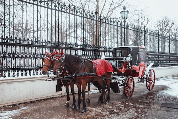 Пара красивых лошадей в красной упряжке, запряженной в старую красную повозку Premium Фотографии