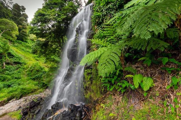 自然の真ん中にある水の滝。サンミゲル。アゾレス Premium写真