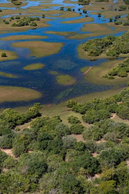Аквидауана, мату-гросу-ду-сул, бразилия: вид с воздуха бразильских водно-болотных угодий, известный как пантанал - вертикальное изображение Premium Фотографии