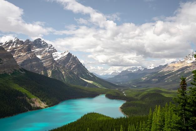 カナダのペイトー湖を見る美しい視点 Premium写真