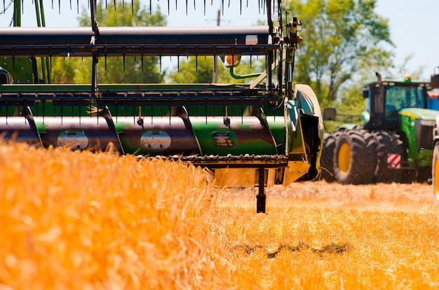 農業機械は、オープンフィールドで黄色の小麦作物を収集します Premium写真