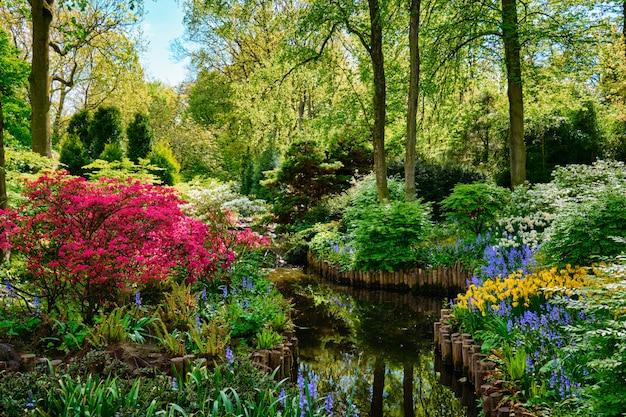 Кёкенхоф цветочный сад. лиссе, нидерланды. Premium Фотографии