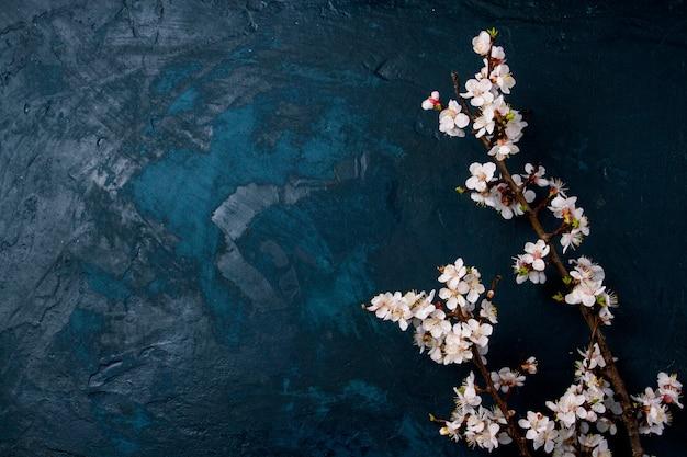 暗い青色の背景に花と桜の枝 Premium写真